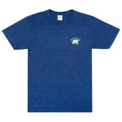 blue mineral wash